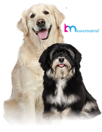 Köpek Maması Kampanyaları